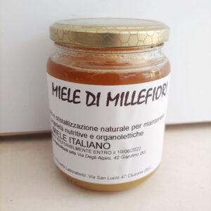Miele italiano naturale di millefiori